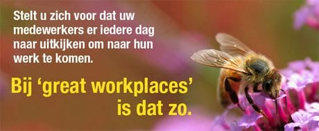 great-workplace