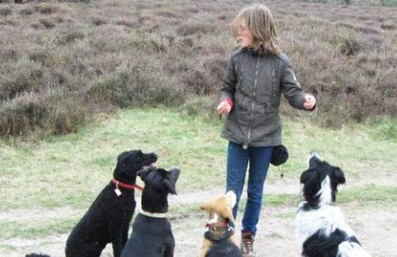 WishYes_honden-uitlaatservice wens