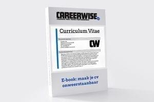 E-book: onweerstaanbaar cv