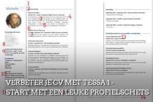 CV-check Careerwise feedback
