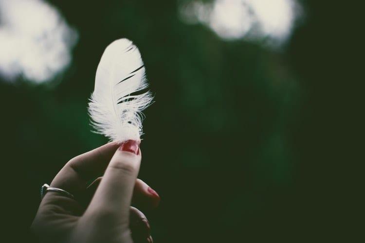 meer veerkracht - 6 tips voor meer veerkracht - by Lisa Fotios - person-holding-white-feather-in-selective-focus-photography-1330029